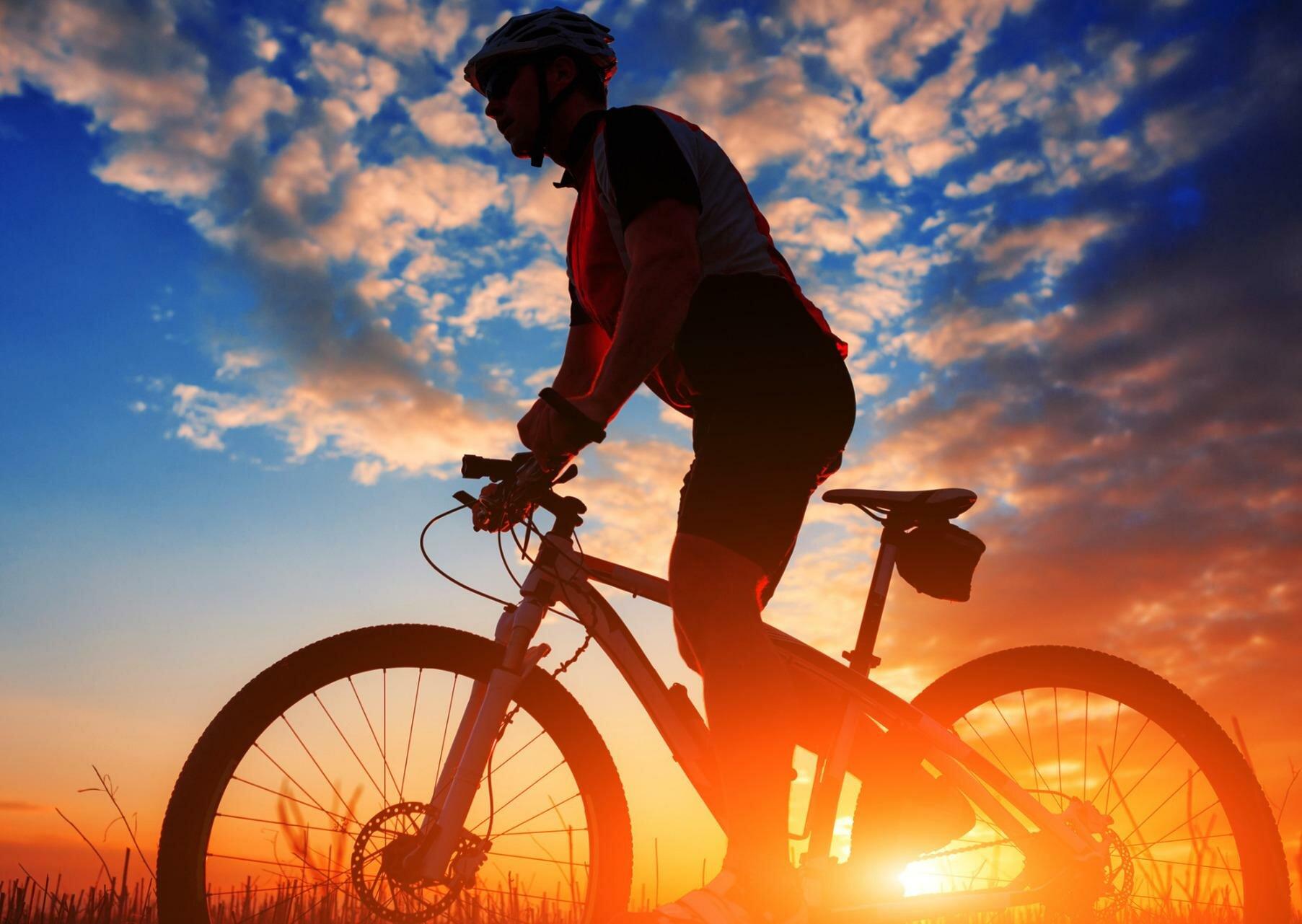 Кому полезен и кому вреден велосипед?